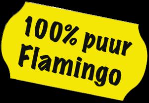 100procentflamingo sch